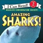 Amazing Sharks by The Wildlife Conservation Society