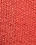 SWISS LACE Swiss Voile Stone Edge Design- Coral